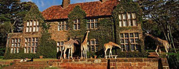 giraffe-manor-surrounding3